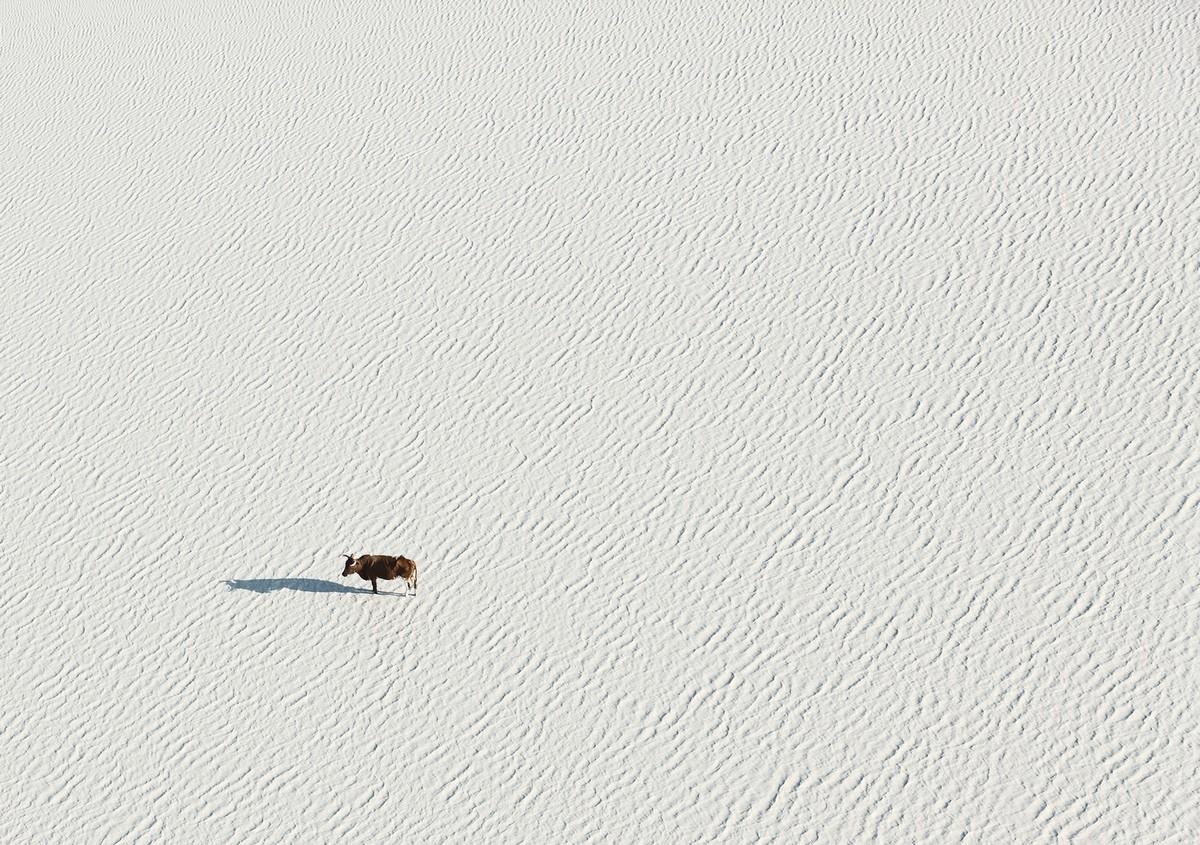 Африка сверху: поразительные аэроснимки Зака Секлера