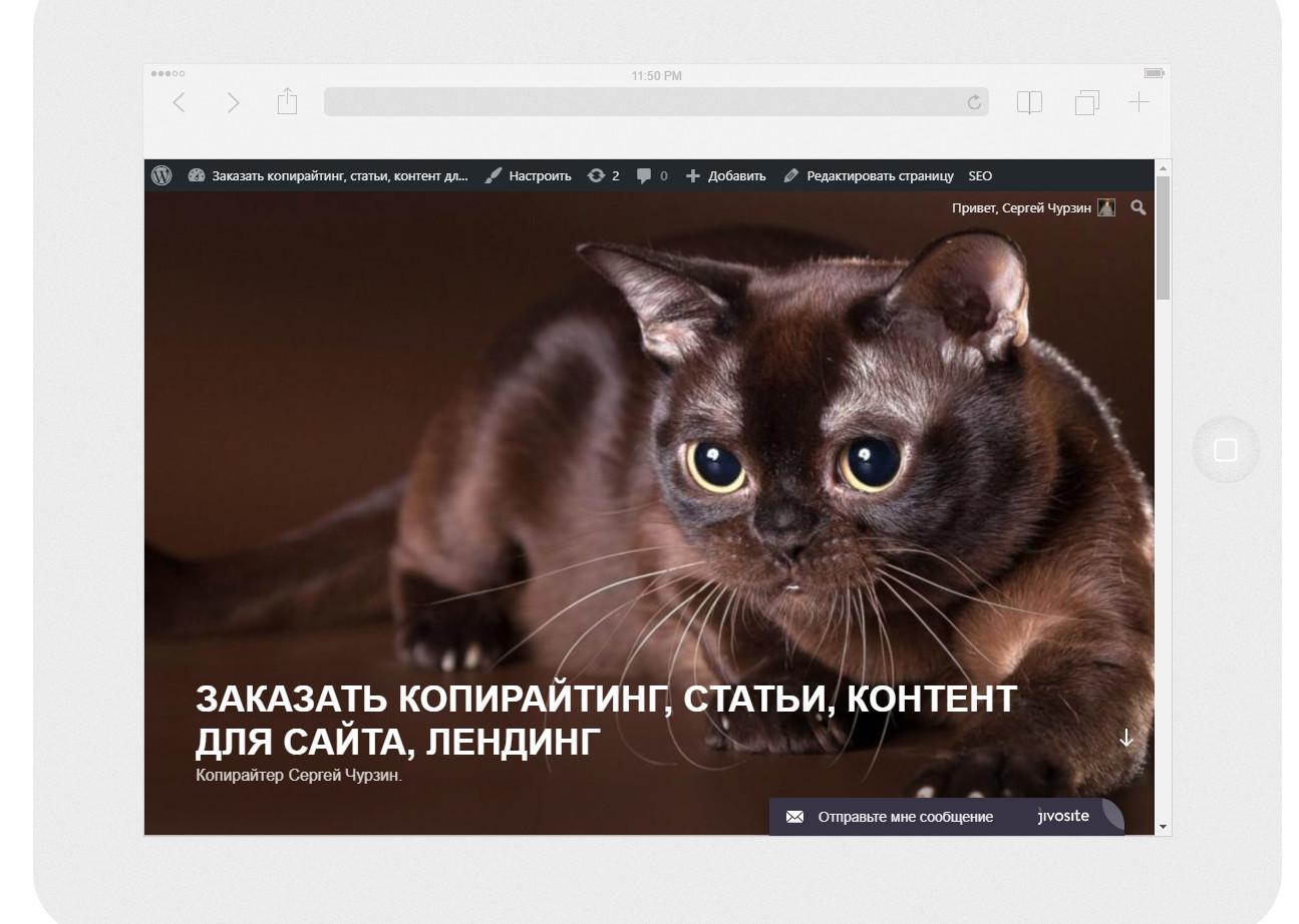 0_1947ce_9a0bda8d_orig Полезный сервис, который поможет вам увидеть как выглядит ваш сайт в мобильных устройствах
