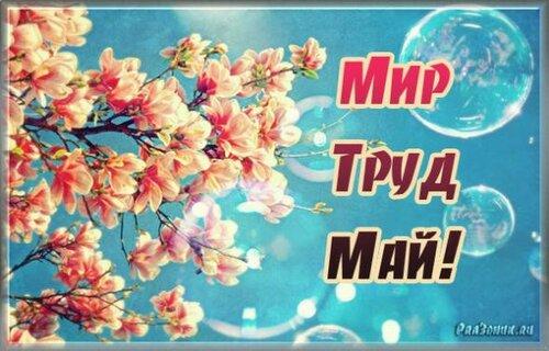 1 мая! С праздником Весны и Труда! Цветение открытка поздравление картинка