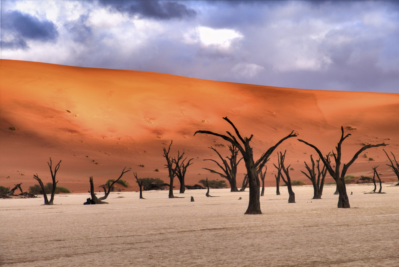 высохшее озеро Deadvlei, пустыня Намиб (2)