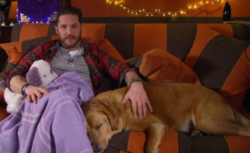 Том Харди написал трогательное письмо в память о своем любимом псе Вуди, которого не стало на этой неделе