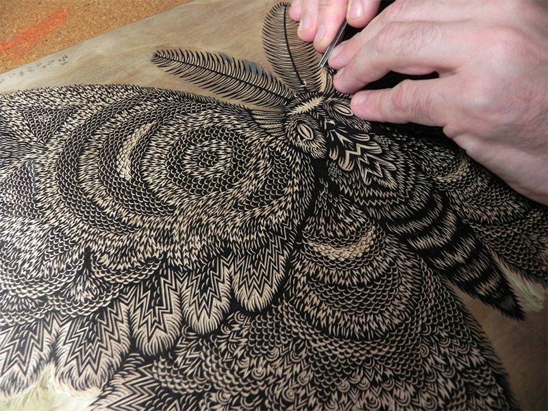 Moth: A New Woodcut Print from Tugboat Printshop