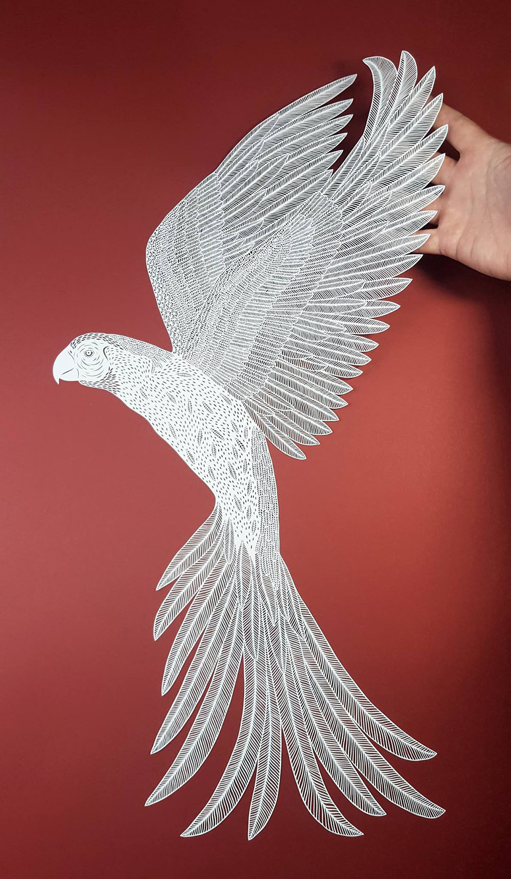 Superb Cut Paper Artworks by Pippa Dyrlaga