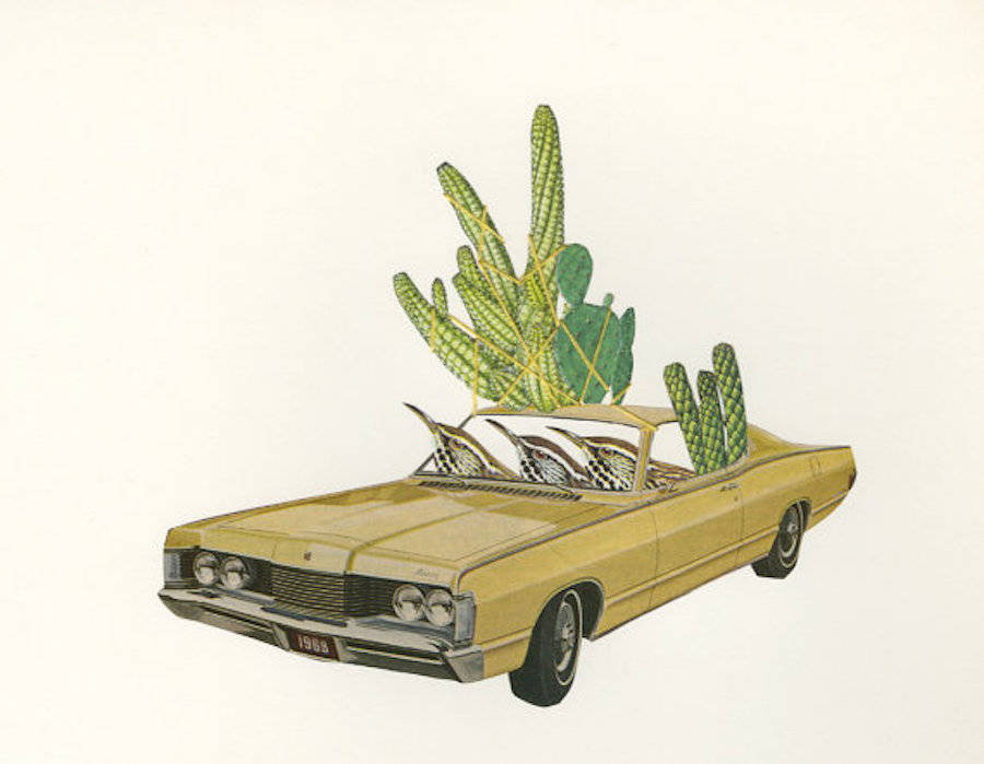 Birds Plants and Vintage Cars Collages