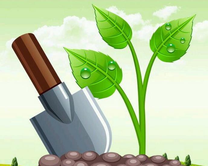 14 мая Всероссийский день посадки леса. Росточек и лопата
