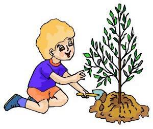 14 мая День посадки леса. Мальчик сажает дерево