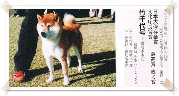 Takechiyo Go Sanuki Mizumotosou1.jpg