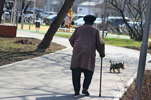 Две старушки на прогулке...