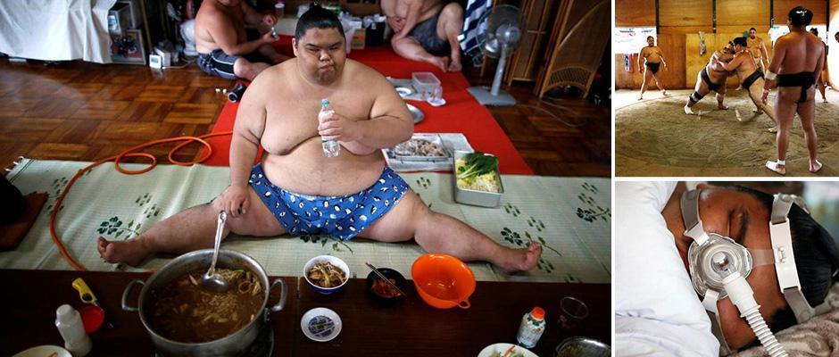 Мир японских элитных борцов сумо