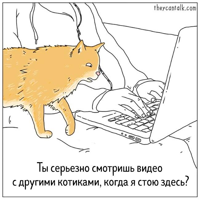 © theycantalk.com
