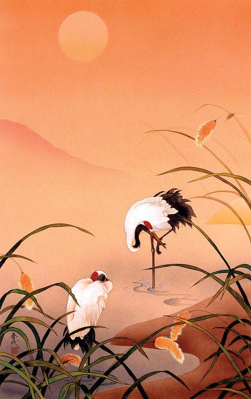 birds-haruyo-morita.jpg