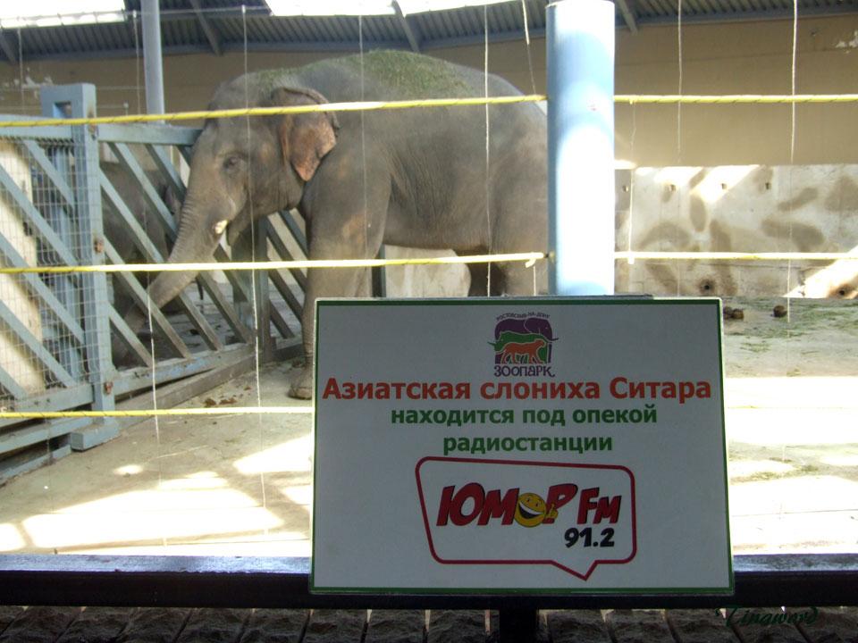 зоопарк-48.jpg