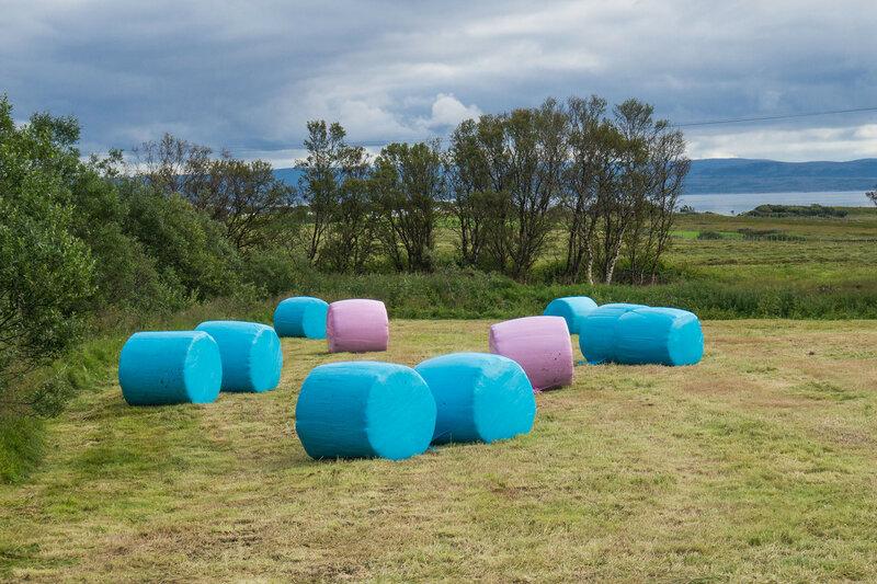сено в розовых и синих упаковках в норвегии