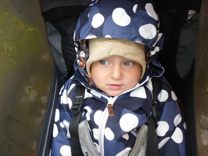ребенок в велоприцепе thule chariot cougar в дождь