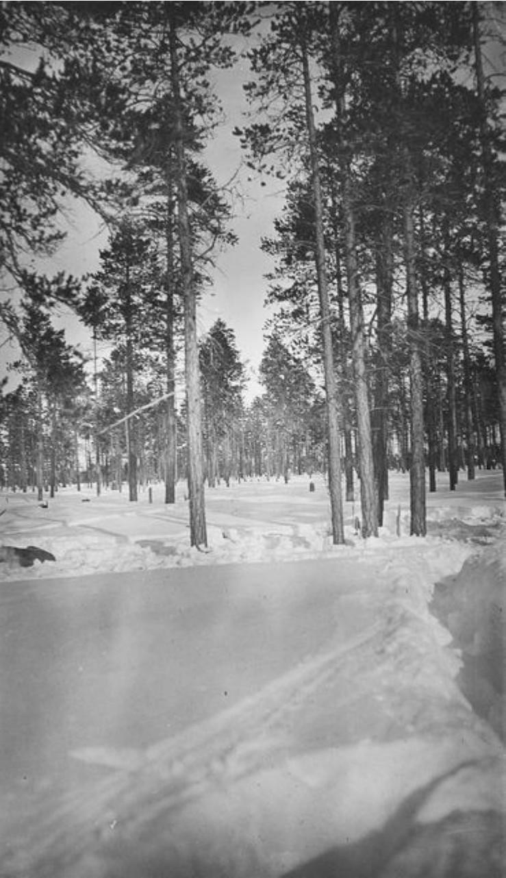 30. Зимний лес пейзаж