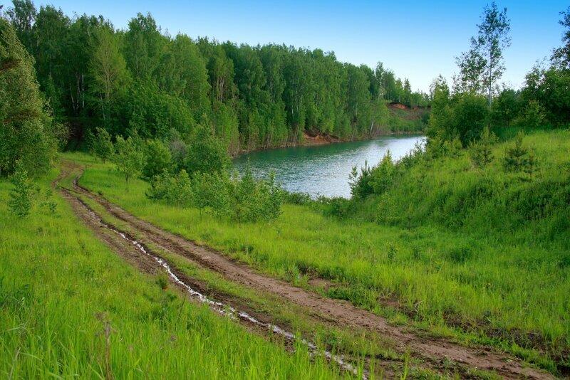 Дорога в лес,зеленый и  прохладный...