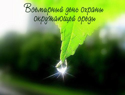Всемирный день окружающей среды (World Environment Day)