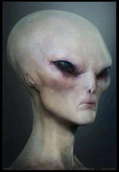 С днем уфолога и НЛО. Инопланетянин-контактер
