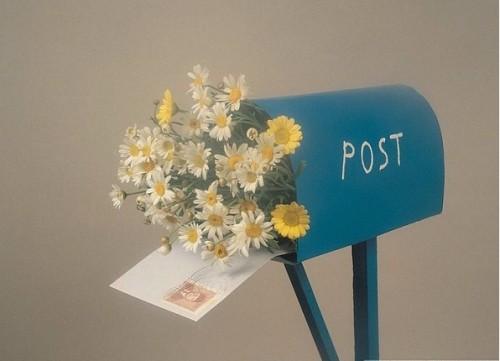 День почты! Цветы в почтовом ящике для почтальона