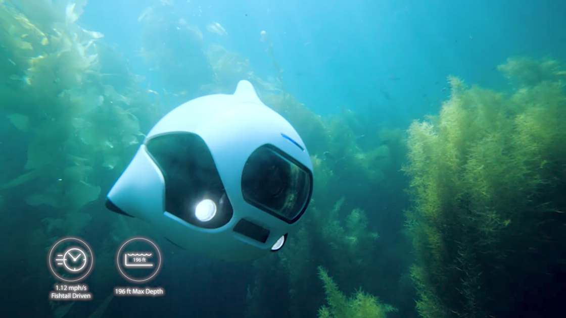 BIKI - This adorable bionic fish is an underwater drone