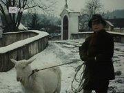 http//img-fotki.yandex.ru/get/2078/176260266.df/0_256824_ceffd428_orig.jpg