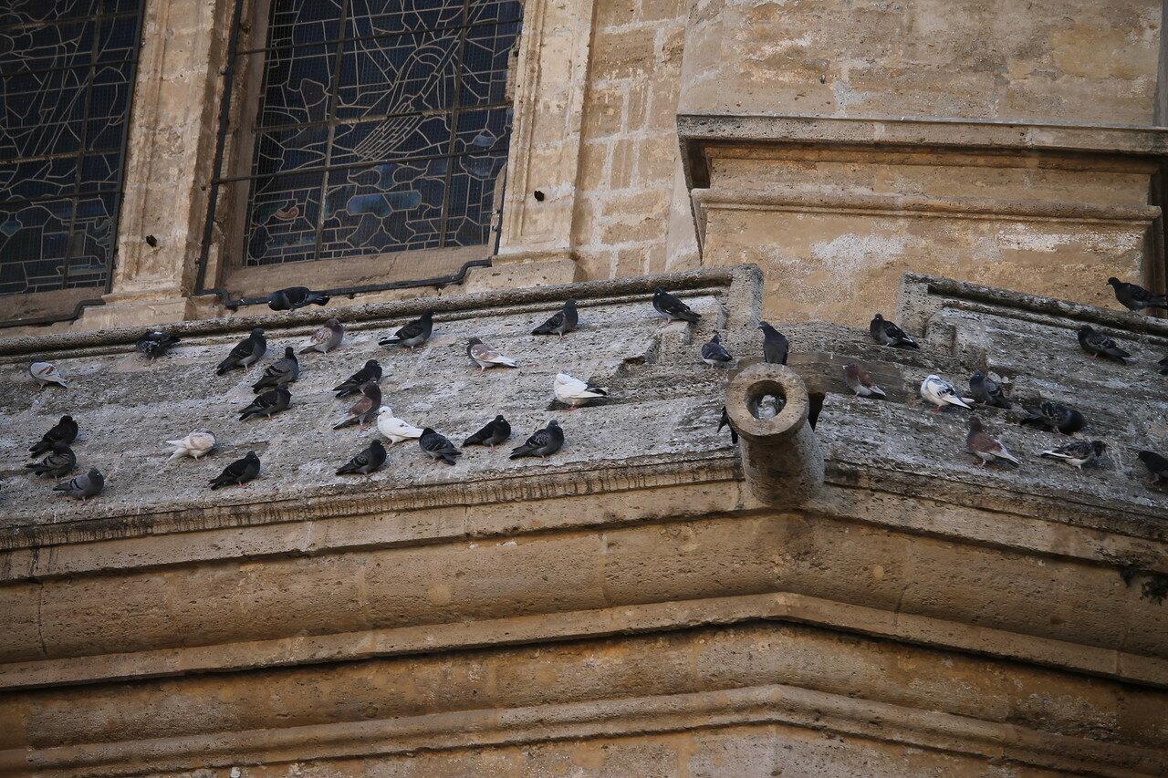Малага. Кафедральный собор. Северный фасад
