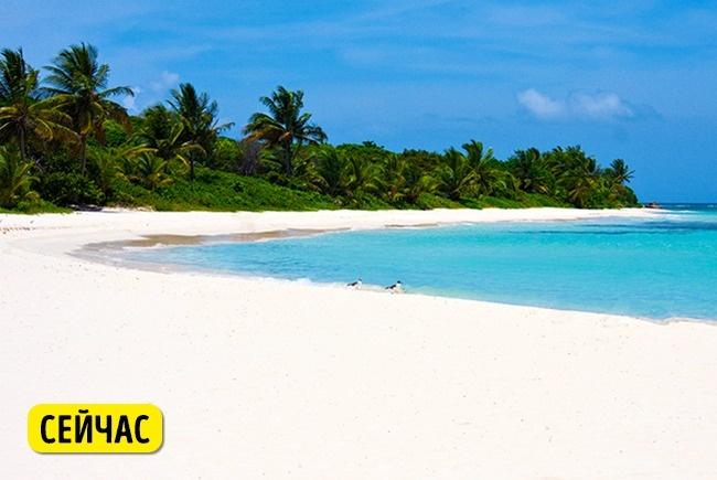 © depositphotos  © depositphotos  Ранее ВМС США использовали остров для учебных бомбарди