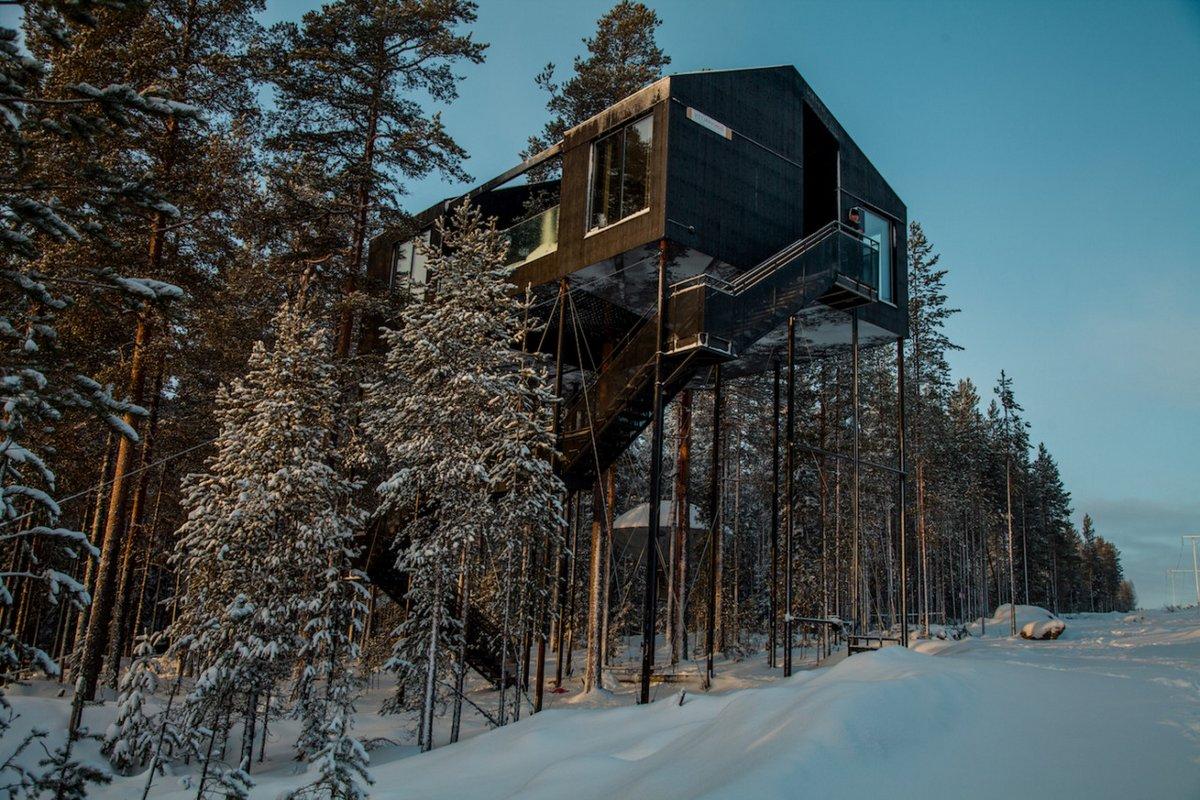 Самый красивый дом на дереве