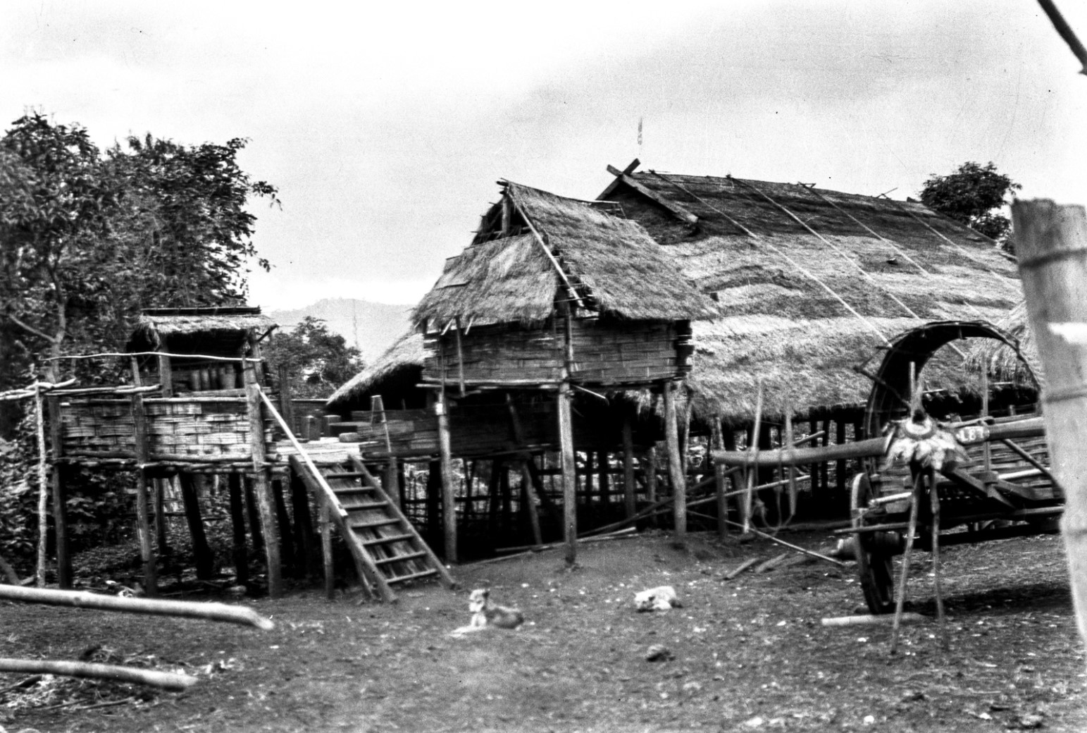 1067. Вид фермы