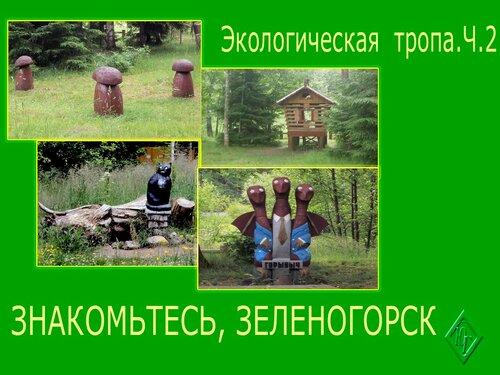 Сказочная экотропа в Зеленогорске