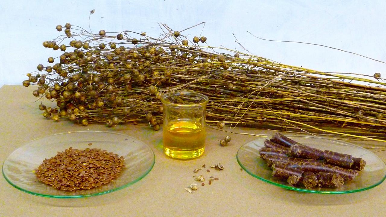 Maroosya льняное масло
