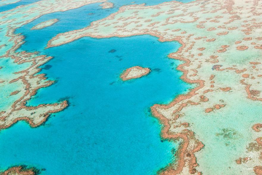 10. Сердце рифа, Большой Барьерный риф, Квинсленд