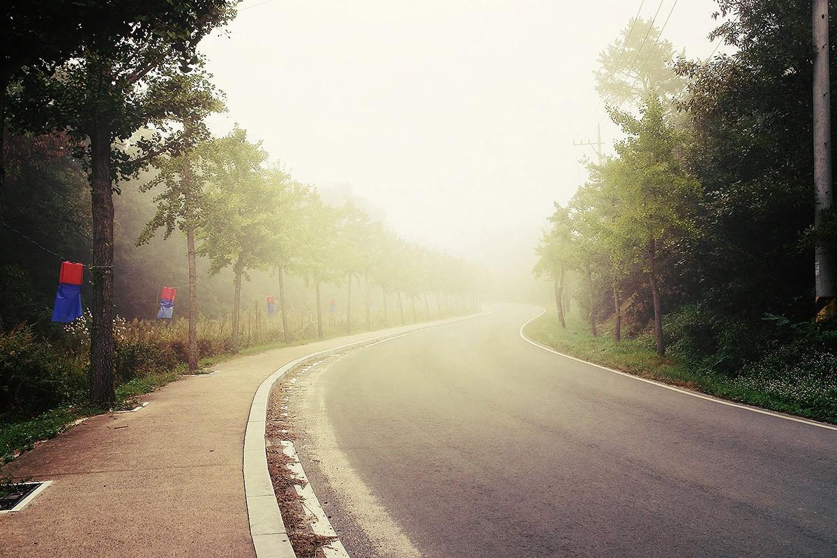 36. Утро встретило туманом. Я вновь ем на коленках на завтрак роллы из 7Eleven, а путь наш лежит на
