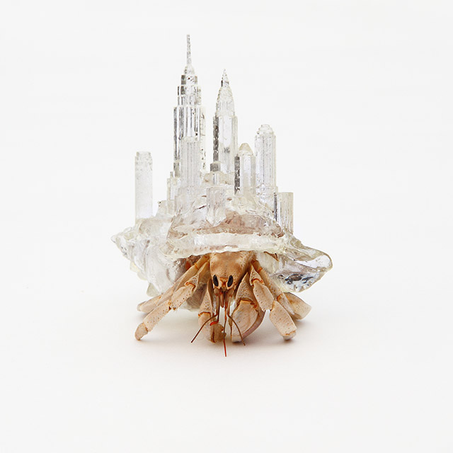 Translucent Hermit Shell Crabs Adorned with Architectural Cityscapes by Aki Inomata