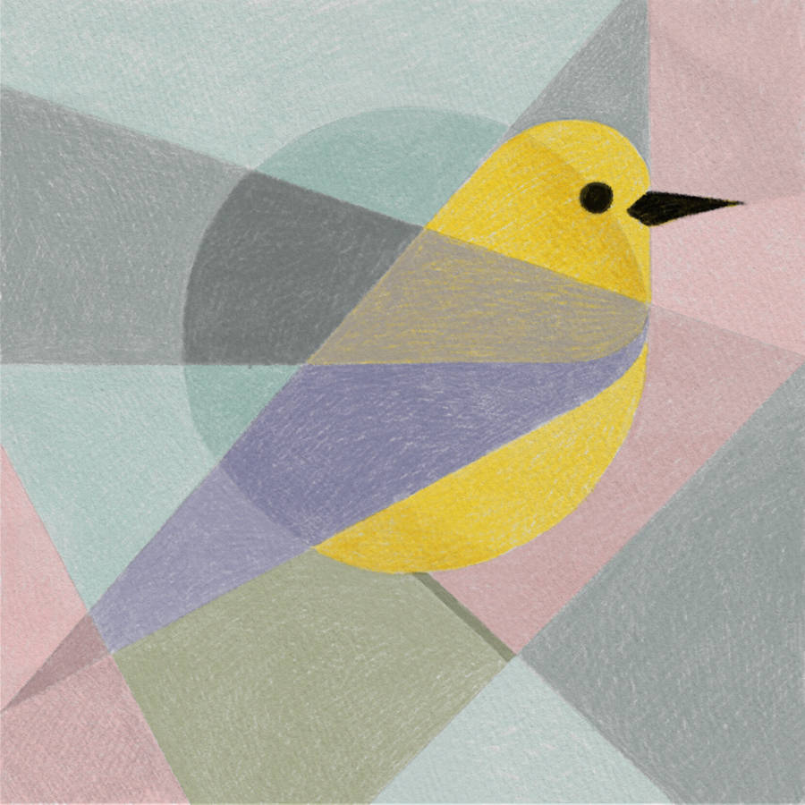 Geometric Birds Drawn with an iPad