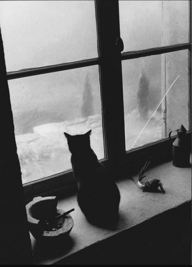 1957. Горд