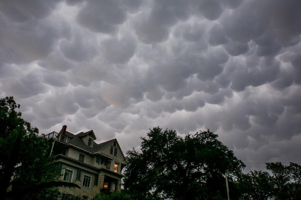 18. Туман и птица в небе в центре Варшавы, Польша. (Фото Kacper Pempe):