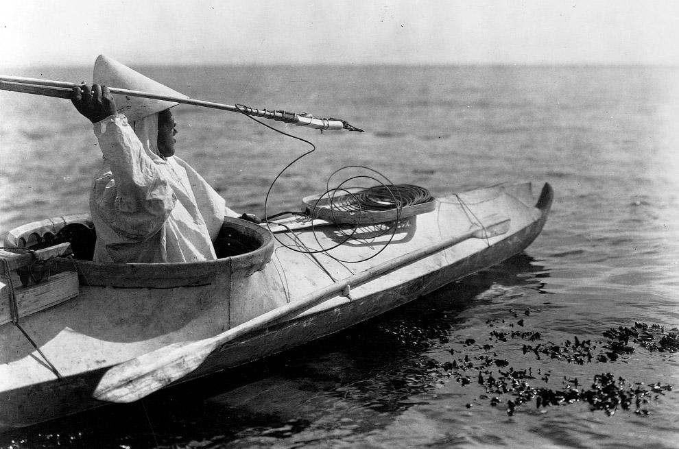 8. Аляска развивается. Новые фермеры, 16 июня 1935.