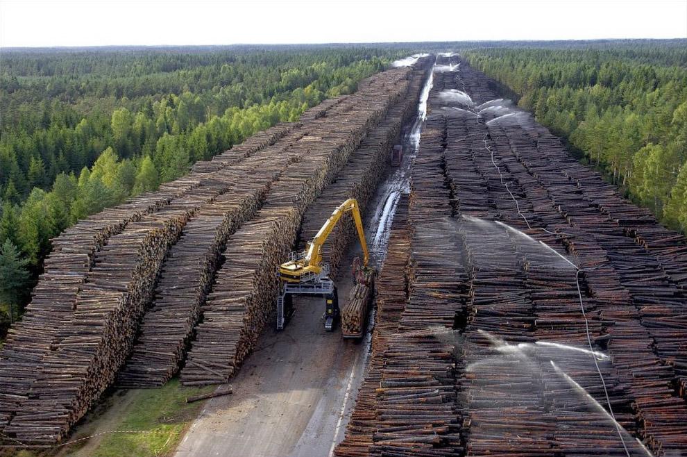 Аккуратные шведы тщательно собрали большую часть обрушенных ураганом деревьев и в окрестностях