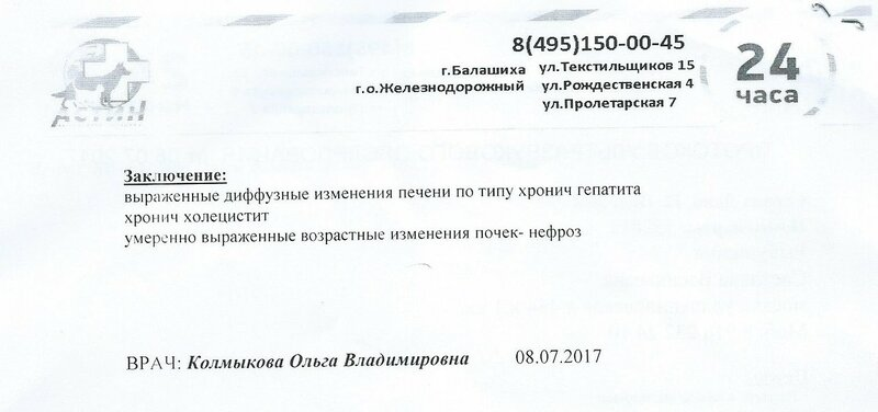 2017.07.08_Даня_УЗИ_диагноз.jpg