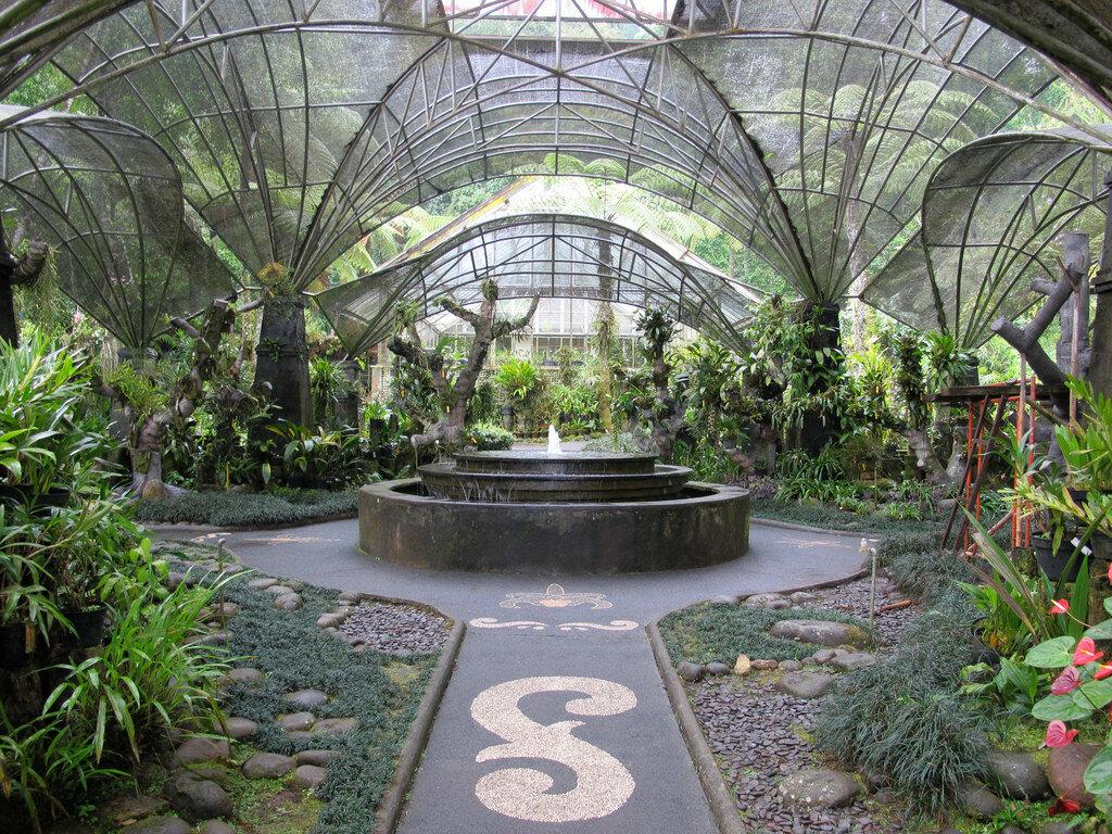 фото ботанического сада на алтуфьевском шоссе вот прокатиться ней