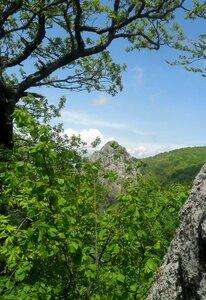 На Кавказе, в мае, по тропе шагая ... SAM_7001.JPG