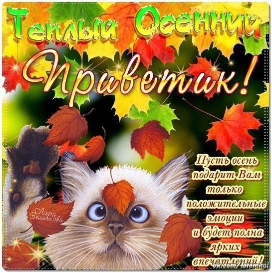 Открытки. Теплый осенний приветик! открытки фото рисунки картинки поздравления