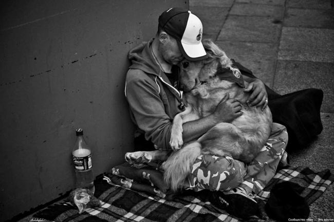 Вместо тысячи слов: 10 фотографий, которые тронут вас до глубины души