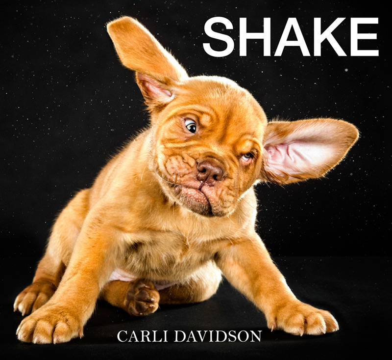 Published just today, Shake is a new book of photos from Portland-based photographer Carli Davidson