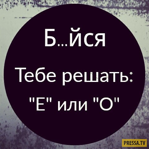 1479926632_fiby-su5h1c.jpg