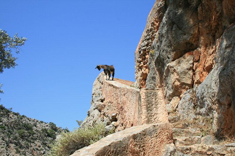 Крит, заброшенный монастырь, местные жители
