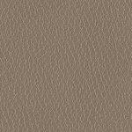 leather-texture1.jpg