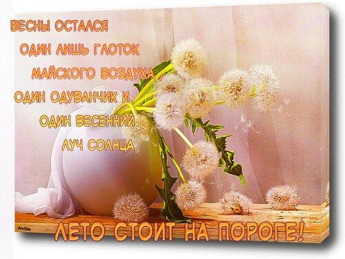 https://img-fotki.yandex.ru/get/251308/131884990.af/0_14a738_6e73ecb3_L.jpg