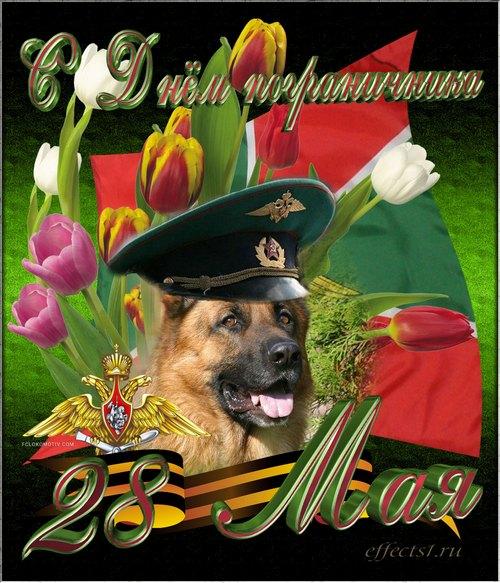 Поздравляю! День пограничника! Собака, цветы